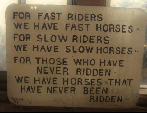 What Kind Of Horse Will You Ride?